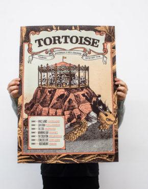Tortoise2017